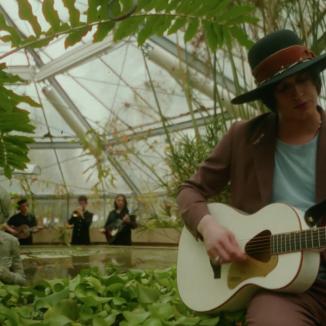 A Fonogram-díjas Fran Palermo tagjai a Füvészkertben zenéltek